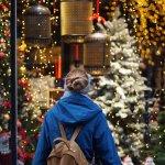 Como fazer lojas de rua venderem mais no Natal